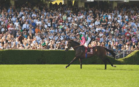 Equestrian Sundays at the Auteuil and ParisLongchamps racecourses