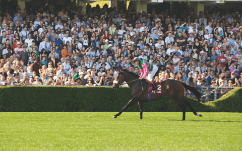 Equestrian Sundays at the Auteuil and ParisLongchamps racecourses